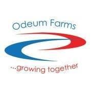 Odeum Farms