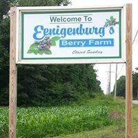 Eenigenburg's Berry Farm - North Farm