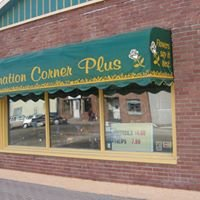 Carnation Corner Plus