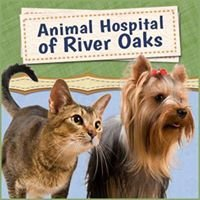 Animal Hospital of River Oaks
