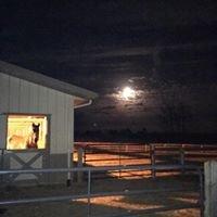 Unbridled Hearts LLC, Horses Heartening Humanity