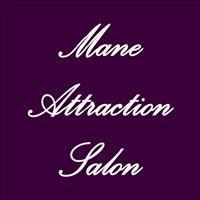 Mane Attraction Salon