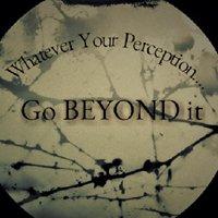 Beyond Perception Investigators