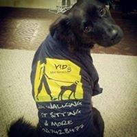 Very Important Pets - VIP Dog walking & Pet sitting