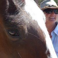 Windhorse Wisdom Equine Facilitated Learning & Coaching