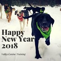 Valley Canine Training