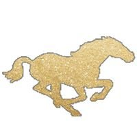 Pony Express Girls