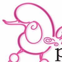 Head To Tail Pet Grooming LLC