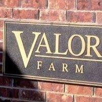 Valor Farm