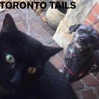 Toronto Tails