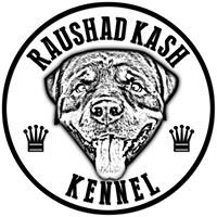 Raushad Kash Kennel