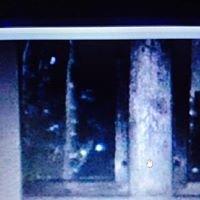 Night Spirits Paranormal