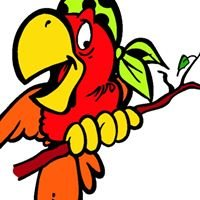 Parrots N Stuff