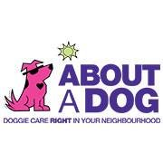 About A Dog - Toronto Dog Walker and Boarding