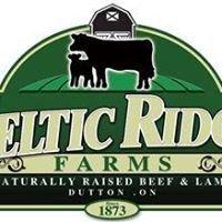 Celtic Ridge Farms