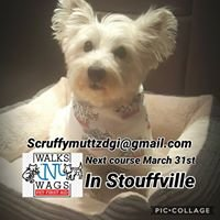 Scruffy Muttz Dog Grooming and Pet 1st Aid