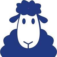 Designed 4 Ewe