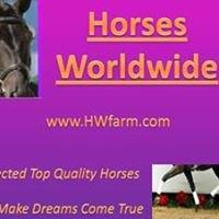 www.HWfarm.com - Horses Worldwide - Selected Quality Horses -