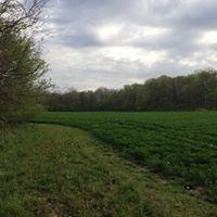 Moore Road Farm