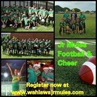 Jr Mules Youth Football
