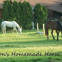 Allison's Homemade Horse Treats