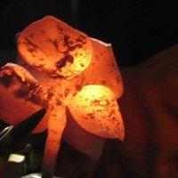 North Texas Blacksmith Association