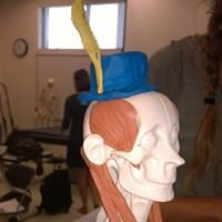 College of the Sequoias Physical Therapist Assistant Program