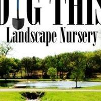 Dig This Landscape Nursery