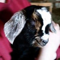 Owens Goat Farm