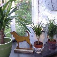 Clutterhound Vintage & Frox