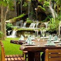 ข้าวเม่า-ข้าวฟ่าง ป่าในจินตนาการ Khaomao-Khaofang Chiangmai 黑森林餐厅