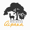 Mielnicka Alpaka