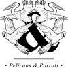 Pelicans & Parrots
