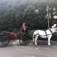 Horsedrawn Cab Co.