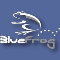 BlueFrog Screen Printing & Embroidery
