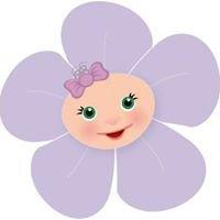 Shy Violet Baby