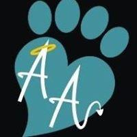 Animal Antics Behaviour Centre