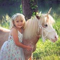 Heidi Burks Photography