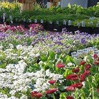 D.S. Gardens