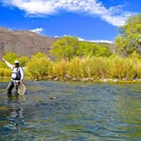 Thrive on Fly fishing
