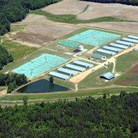 Butlerbioenergy Farm