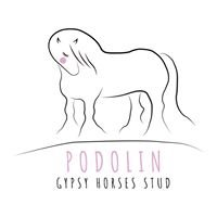 GypsyHorses of Podolin Stud