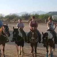 Rocking K Ranch Stables