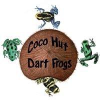 Coco Hut Dart Frogs