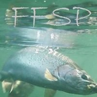 Fly Fishing Services Patagonia