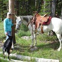 Yellowstone Park Horseback Pack Trips