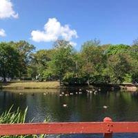 Lees Pond
