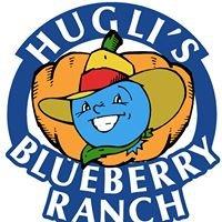 Hugli's Blueberry Ranch