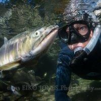 Salmon Safari - Canyon Diving