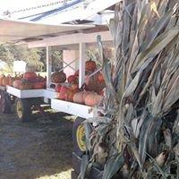 Rolling Green Farm Market